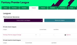 Skapa fantasy premier league ligor