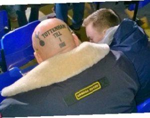Tottenham fans på Spurs arena