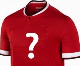 premier league tröja Zlatan